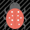 bug, ladybird, malware, threats, virus