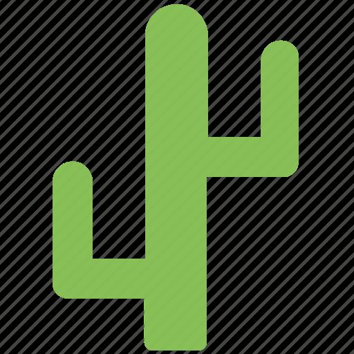 cactus, desert plant, ecology, nature, plant icon