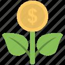 dollar, income, money plant, plant, profit
