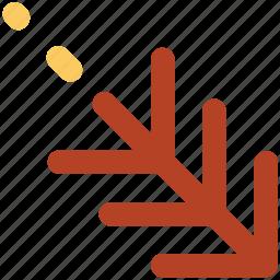 cypress leaf, design, drawing, evergreen tree, fir, thuja twig, twig icon