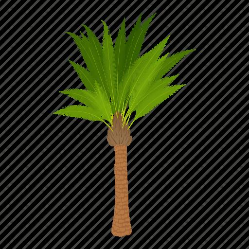 Cartoon Floral Green Oil Palm Tree Palmtree Icon