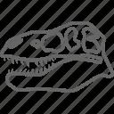 dinosaur, fossil, head, rex, skeleton, skull, t rex icon