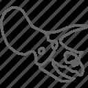 dinosaur, fossil, head, jurassic, skeleton, skull, triceratops icon