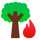 catastrophe, destruction, disaster, fire, forest, nature, tree