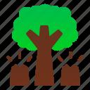 danger, deforestation, disaster, environtment, forest, nature, tree