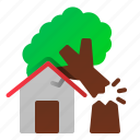 danger, destruction, disaster, fallen, house, nature, tree