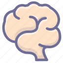 brain, encephalon, harns, pericranium icon