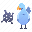animal, bird, chicken, disease, flu, h5n1, virus