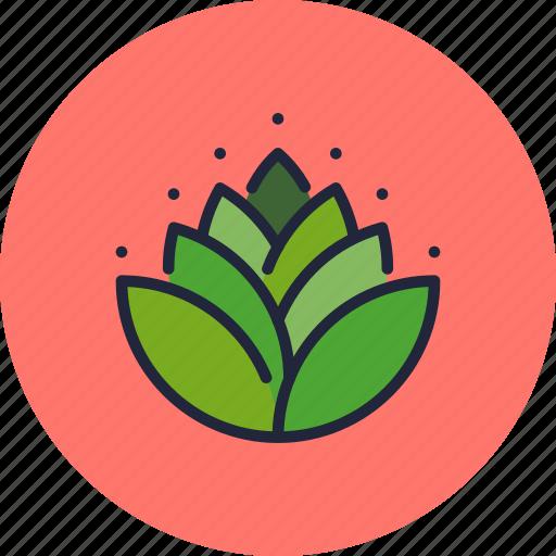 Diwali, hindu, holy, leaves, lotus, mango, religion icon - Download on Iconfinder