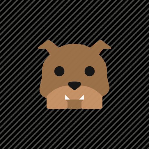 animal, animals, bulldog, dog, dogs, pet, puppy icon