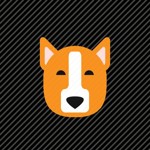 animal, chiba, cute, dog, dogs, head, puppy icon
