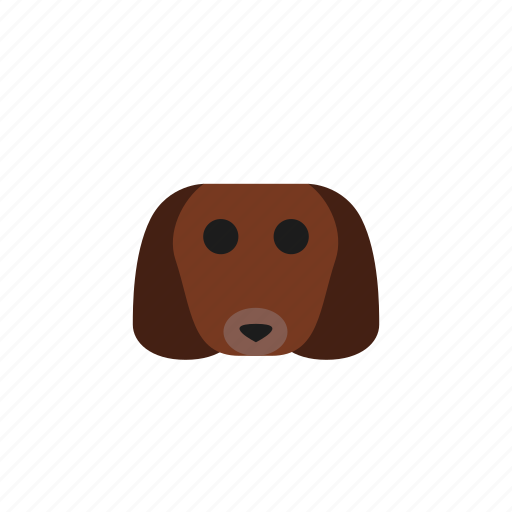 animal, animals, dachshund, dog, head, pet icon