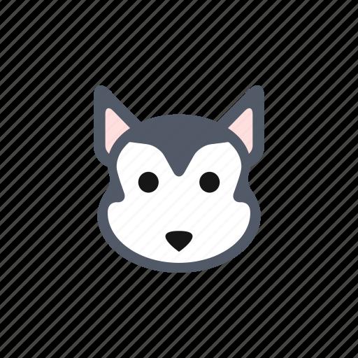 animal, animals, cute, dog, husky, pet, puppy icon