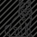chiba, agita, dog, japanese, breed