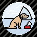do, dog, cone, in icon