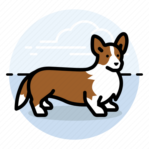 corgi, dog, show icon