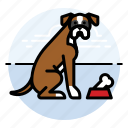 boxer, dog, with