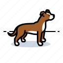 d, dog, doggie, doggy icon