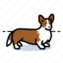 corgi, d, dog, doggie icon