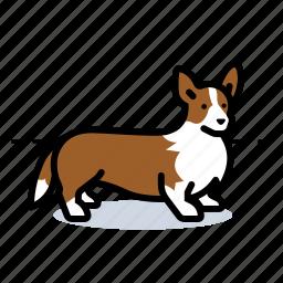 corgi, d, dog, doggie icon