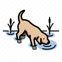 dog, dogs, drinking, labr icon