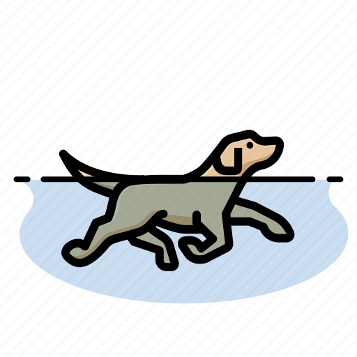 dogs, pets, swimming icon