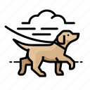 canine, pet, puppy, dog, dog walk icon