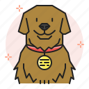 dog, id, identification, licensing, lisence, name, tag icon