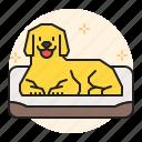 sleep, care, pet, dog, cat, bed, animal icon