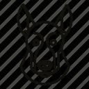 animal, cute, dog, domestic, mammal, pet, puppy