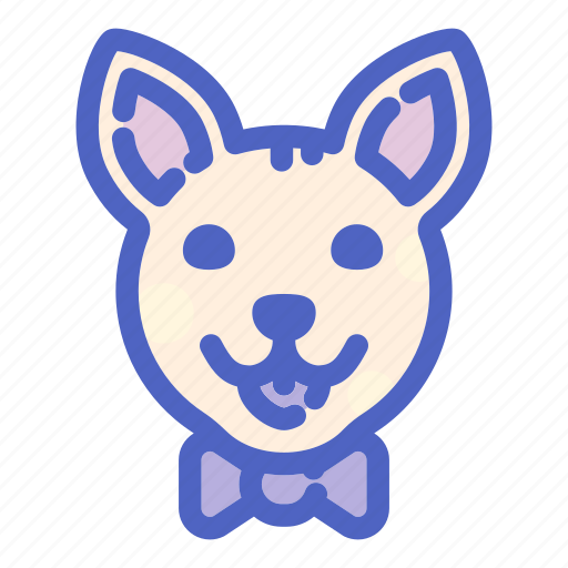 animal, canine, chihuahua, dog, dogs, face, pet icon