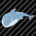 beach, business, dolphin, hand, mammal