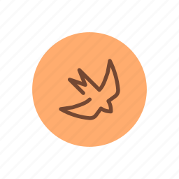 bird, flying, freedom, outdoor, spring, swallow, wings icon