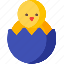 brocken, chicken, christmas, decoration, easter, egg, holiday icon