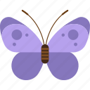 animal, butterfly, easter, insect, purple, spring icon