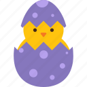 animal, chick, cracked, easter, egg, eggshell icon