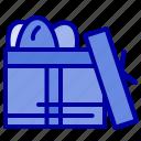 birthday, box, day, gift icon