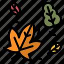 autumn, fall, leaf, dry, foliage
