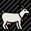 goat, zoo, animal, meat, life