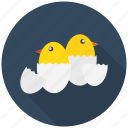 celebrate, chicken, easter, egg, eggs, festival, hatch icon