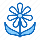daisy, flower, plant, spring icon