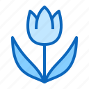 flower, plant, spring, tulip icon