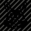 animal, bunny face, cute, easter, rabbit face