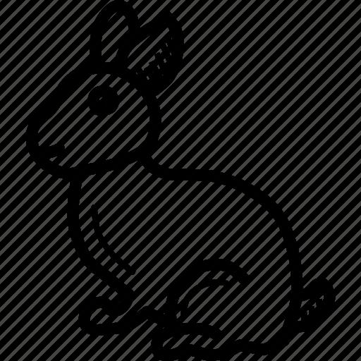 animal, bunny, cute, easter, happy, pet, rabbit icon