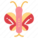 animal, animals, butterfly, insect icon