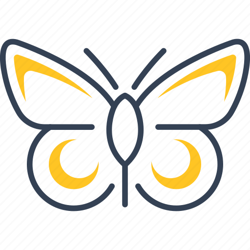 bio, butterfly, eco icon
