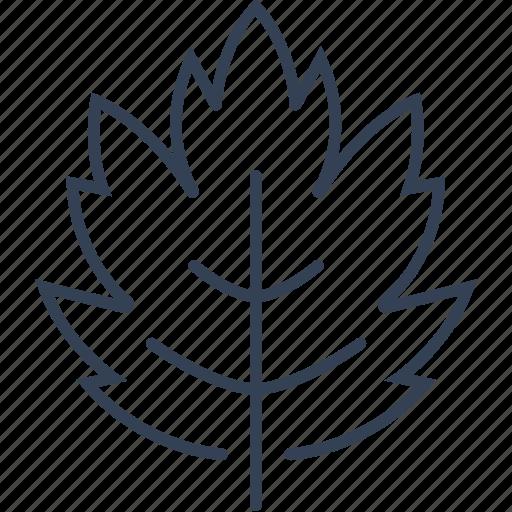bio, eco, sheet, tree icon
