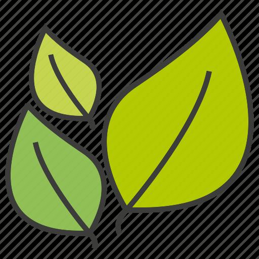 eco, go green, leaf icon