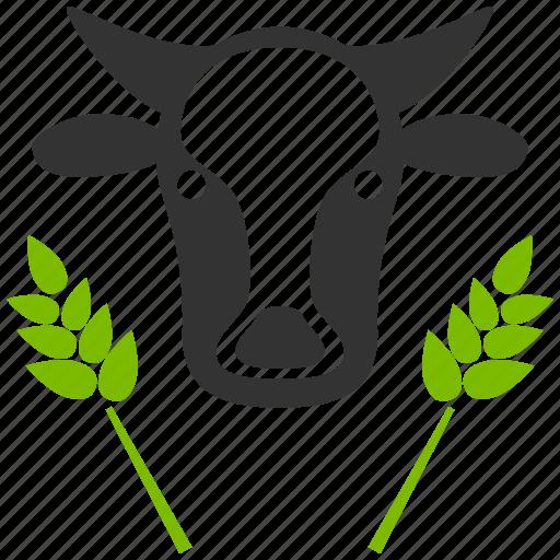 bull, cow head, farm, farming, natural, organic agriculture, wheat icon