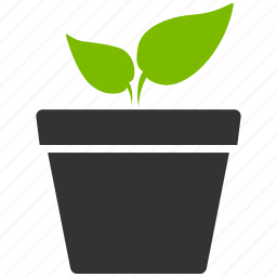 business project, eco startup, ecology, environment, idea, nature, plant icon